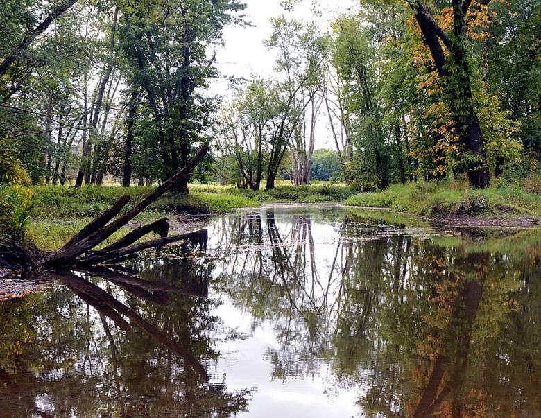 wallkill-river