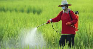 Beyond Pesticides Daily News Blog » Blog Archive Where Do Pesticides Banned  in Europe Go? Mostly to Poorer Countries, While Two-Thirds of Those Sent to  Richer Counties Head for the U.S. -