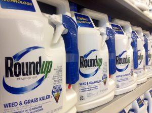 glyphosate-roundup